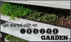 how to grow indoor garden benefits of indoor garden