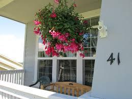 Low Light House Plant Garden Design Garden Design With Low Light House Plants On
