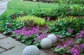 Shady Backyard Ideas Recap 10 Thoughts On Successful Underplanting A Way To Garden