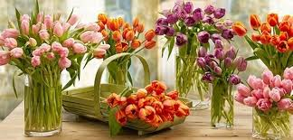 discount flowers 1800flowers discount education discount