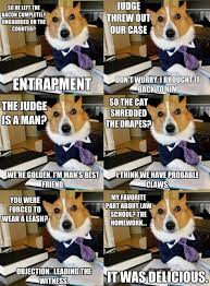 Dog Lawyer Meme - man s best lawyer laughs pinterest lawyer humour and meme
