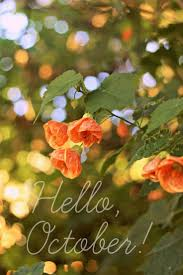 best 25 hello october images ideas on pinterest hello october
