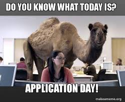 Application Meme - do you know what today is application day connecticut college