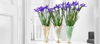 Nice Flower Vases Flower Vases To Re Imagine Your Home On Iris Day Annavasily