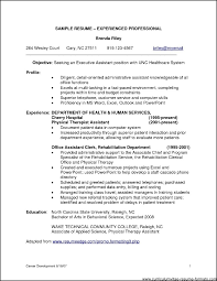 Resume Objective For Experienced Software Developer Sample It Professional Resume Template