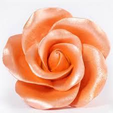 orange sheen amerimist airbrush lustre liquid colours