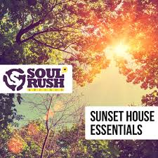 House Essentials by Bass House Sounds House Loops Late Night House Samples Sunset