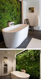 best 20 moss wall ideas on pinterest moss wall art moss art