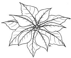 poinsettia coloring pages beccy u0027s place november 2009 coloring pages pinterest