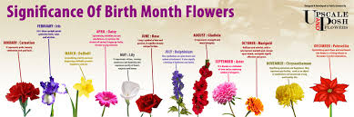 flower of the month birth month flowers visual ly