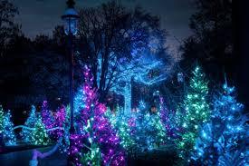 Botanical Garden Atlanta Lights St Louis Botanical Gardens Christmas Light Festival All The Best