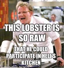 Hells Kitchen Meme - gordon ramsay memes quickmeme