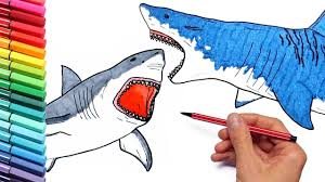 megalodon vs shark drawing and coloring pages for children how