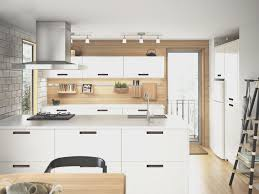 doors for ikea kitchen cabinets kitchen amazing ikea kitchen cabinet doors nice home design