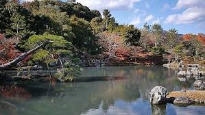 List Of Botanical Gardens California S Best Botanical Gardens Our Favorites List
