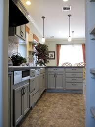 cuisiner une perdrix cuisine cuisiner une perdrix avec beige couleur cuisiner une