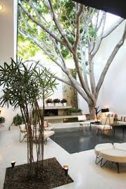 How To Design The Interior Of A House by Indoor Gardening Ideas To Beautify Your Space Interior Garden