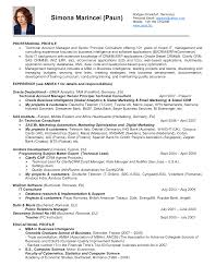 Senior Account Manager Resume Example National Account Manager Pressure Washers And Com Resume Samples
