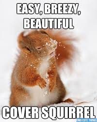 Squirrel Meme - cover squirrel meme by beastwolf619 memedroid