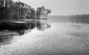 free photo landscape lake black white trees free image on