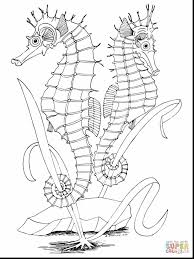 marvelous under the sea coloring pages printable with seahorse