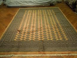 non toxic area rugs surya area rugs caesar gold rug marvellous ideas express calypso