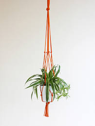 Modern Hanging Planters Hanging Planters Green Trend 3rings
