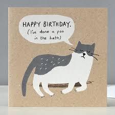 naughty cat birthday card by stormy knight stormy knight iapetus