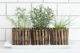 23 clever ways to create an indoor herb garden
