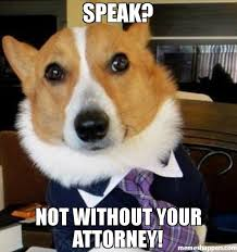 Meme Lawyer - speak not without your attorney meme lawyer dog 45429