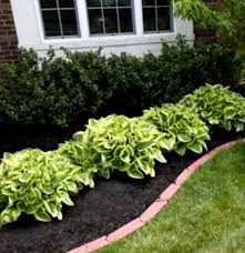 Backyard Flower Bed Ideas Garden Design Garden Design With Great Landscaping Ideas Flowers