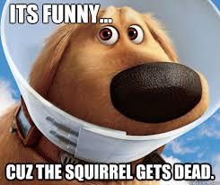 Dead Squirrel Meme - its funny cuz the squirrel gets dead misc quickmeme