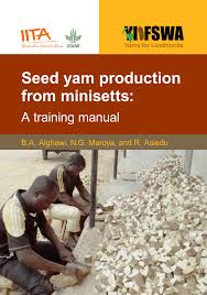 seed yam production from minisetts a training manual