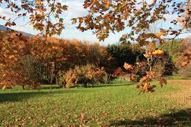 chambre d hote pontcharra parc jardin château le clément gîtes chambres d hôtes château le