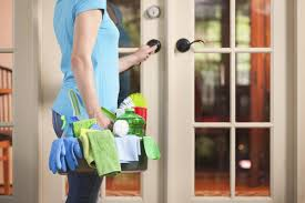 spring cleaning keep pests out of your home with these tips