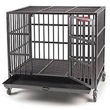 Truck Bed Dog Crate Best Heavy Duty Dog Crates In 2017 Escape Proof Kennel Reviews