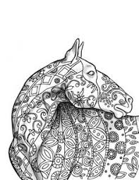 horse amazing animals colouring pages joenay inspirations