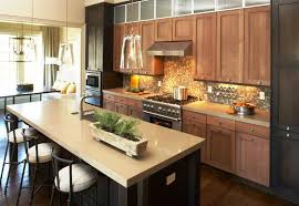 transitional kitchen ideas stunning transitional kitchens design ideas jburgh homes best