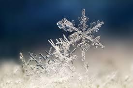 winter snowflakes winter sun sunlight time sunny snowflake