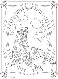 creative haven sealife sea lion welcome to dover publications