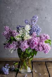 lilac flowers lilac bouquet free photo on pixabay