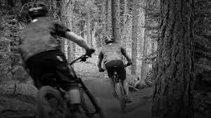 bikes oakley feedback polarized ray premium replacement lenses for oakley ray ban maui jim arnette