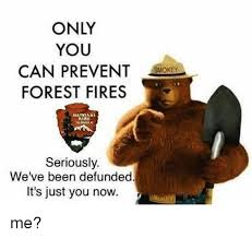 Only You Can Prevent Forest Fires Meme - only you can prevent forest fires atmonai park seriously we ve been