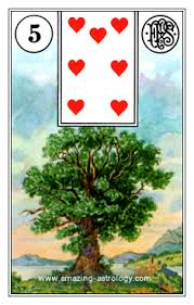 tree card lenormand meaning amazing astrology com