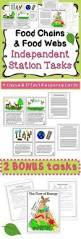 food web worksheet food webs worksheets and food