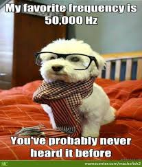 Hipster Dog Meme - hipster dog by machofish2 meme center