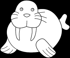 cute walrus coloring page free clip art clipartpost