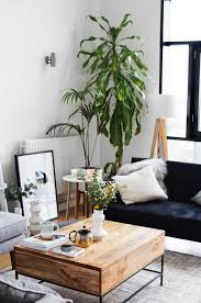 Coming Home Interiors by Mature Plants In A Living Space The Lovely Drawer Home