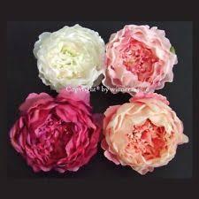 bulk peonies peonies wedding bulk flowers ebay
