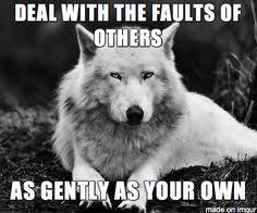 Meme Wolf - insanity wolf meme pinteres